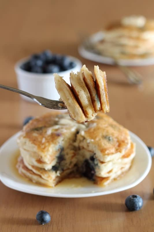 Blueberry Pancakes Long Bite