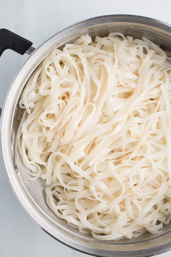 cooked rice noodles in strainer with white background